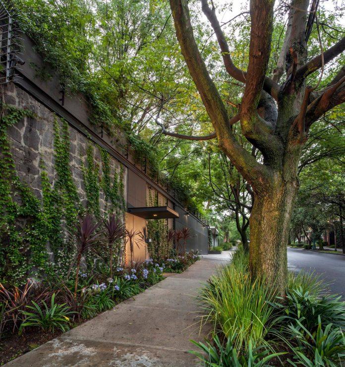 unfold-intimate-landscape-harmonious-architectural-spaces-surrounded-lush-vegetation-01