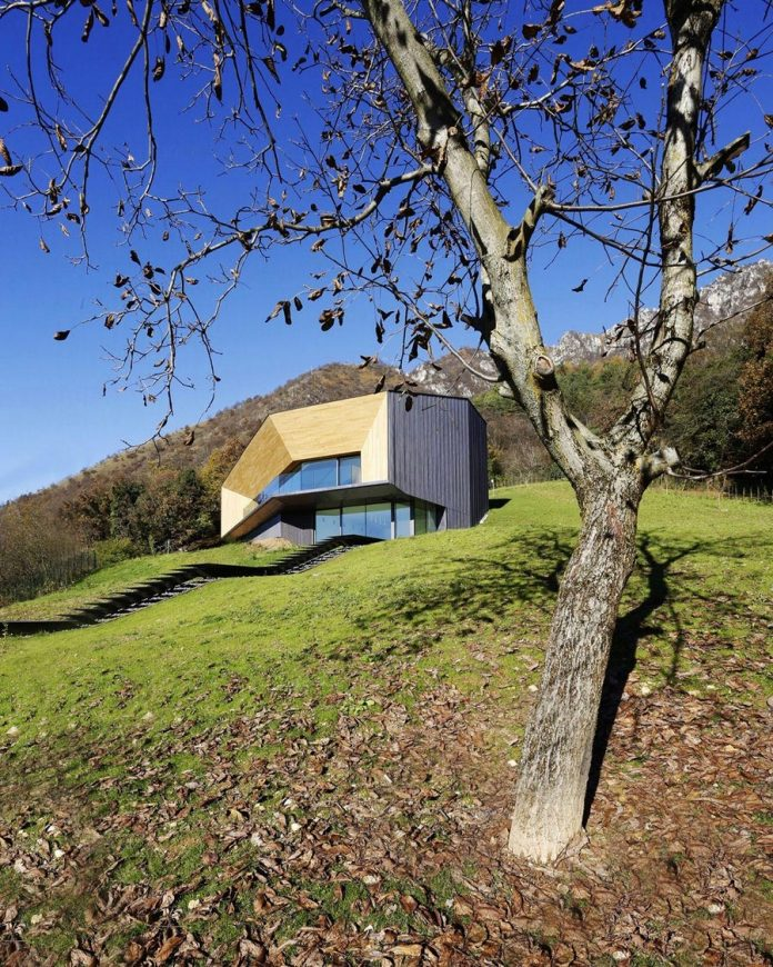 angular-alps-villa-planting-relationship-built-intervention-nature-01