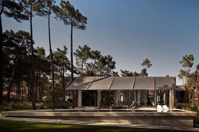 contemporary-residence-located-hexagonal-plot-dense-pine-forest-01