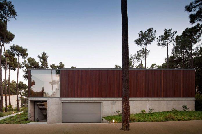 contemporary-residence-located-hexagonal-plot-dense-pine-forest-02
