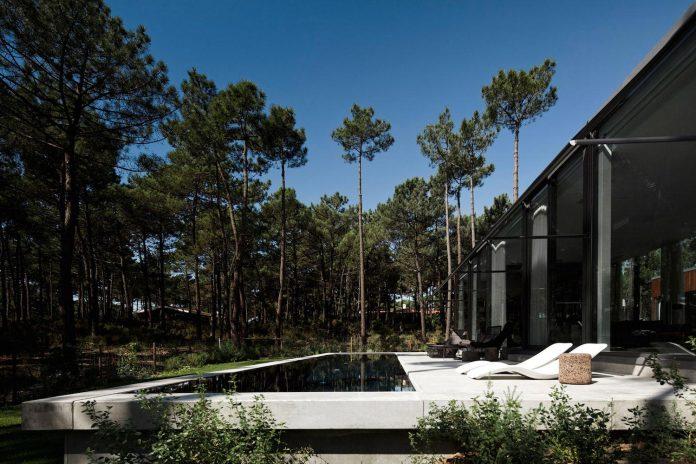 contemporary-residence-located-hexagonal-plot-dense-pine-forest-03