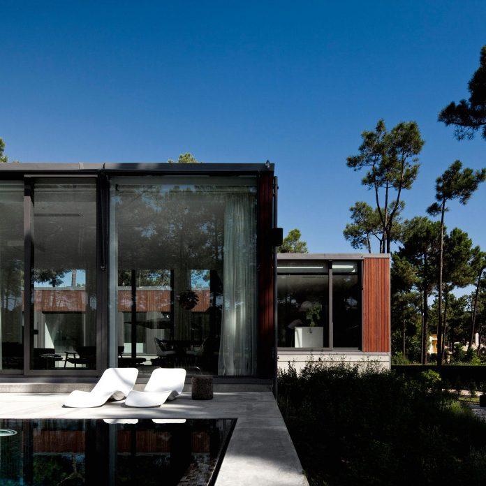 contemporary-residence-located-hexagonal-plot-dense-pine-forest-04