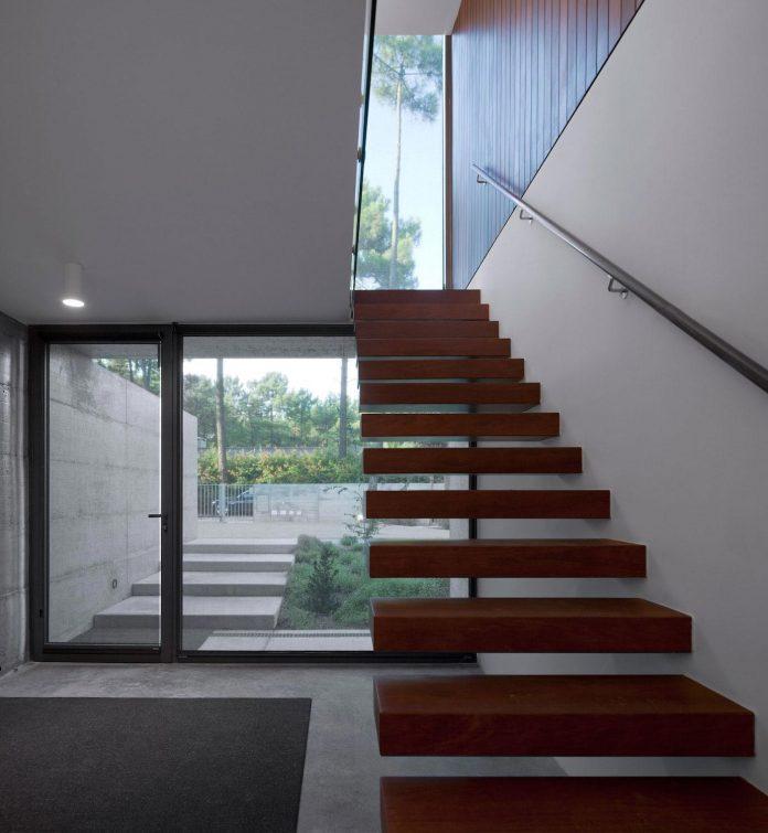 contemporary-residence-located-hexagonal-plot-dense-pine-forest-10