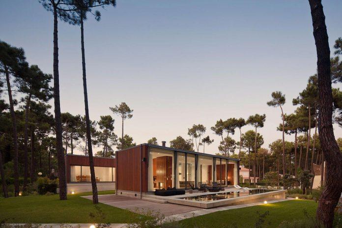 contemporary-residence-located-hexagonal-plot-dense-pine-forest-17