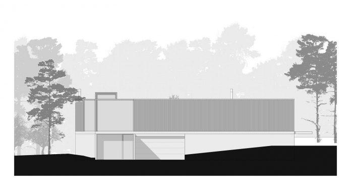 contemporary-residence-located-hexagonal-plot-dense-pine-forest-20