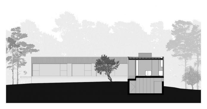 contemporary-residence-located-hexagonal-plot-dense-pine-forest-23