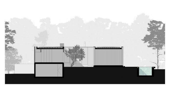 contemporary-residence-located-hexagonal-plot-dense-pine-forest-24