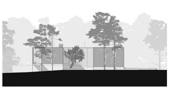 contemporary-residence-located-hexagonal-plot-dense-pine-forest-25