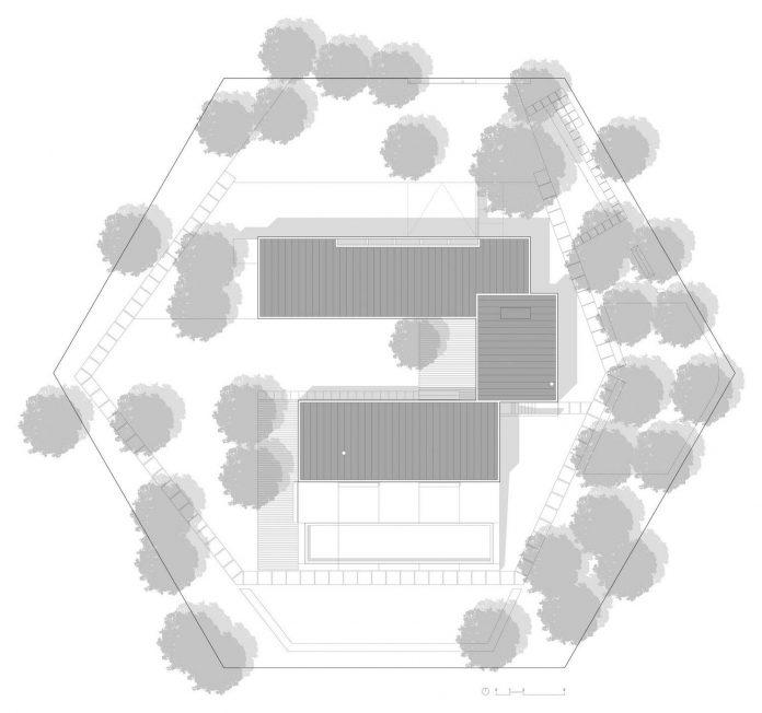 contemporary-residence-located-hexagonal-plot-dense-pine-forest-26