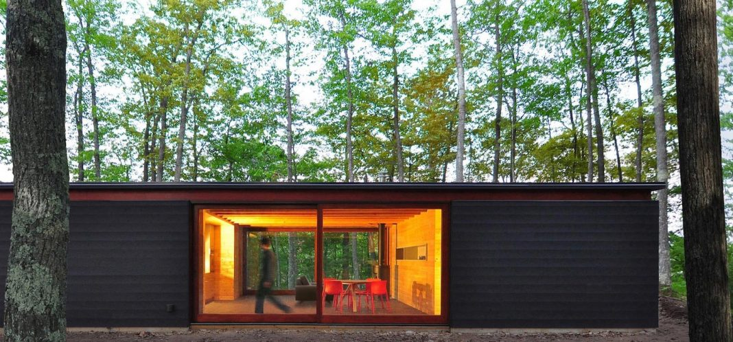 The Linear Cabin: small, unassuming family retreat into the woods