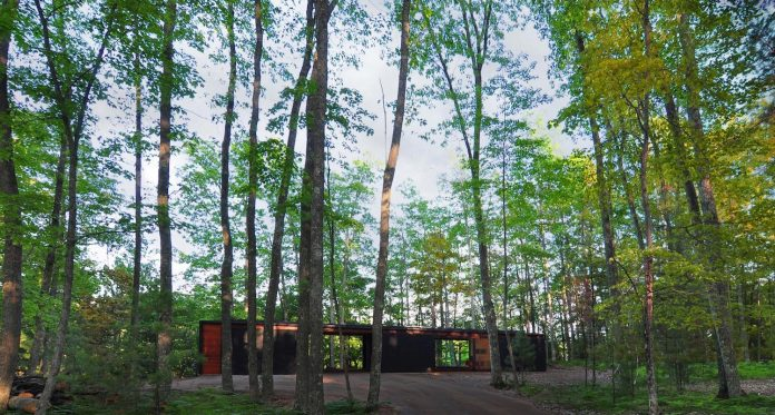 linear-cabin-small-unassuming-family-retreat-woods-08