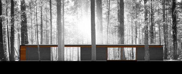 linear-cabin-small-unassuming-family-retreat-woods-10