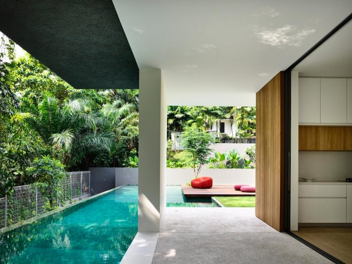 modern-home-design-focus-capturing-nature-alive-create-spectacular-vision-05