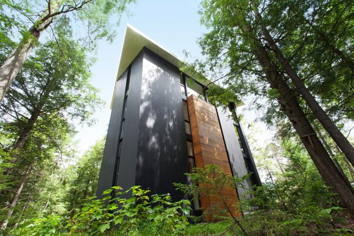 modern-house-woods-polish-sculptor-jacek-jarnuszkiewicz-04