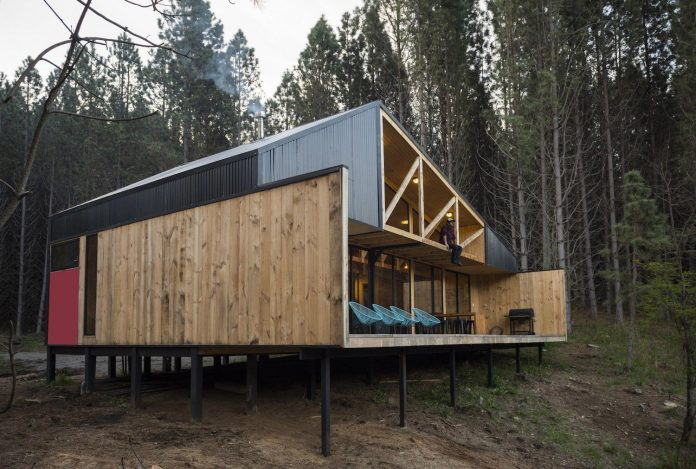 Simple Pine Wooden Shed Includes Spacious Living Room And Awesome Forrest Vie