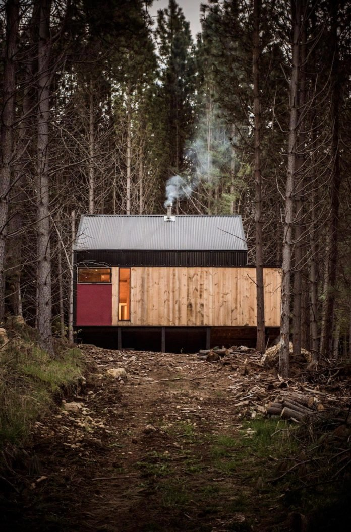 simple-pine-wooden-shed-includes-spacious-living-room-awesome-forrest-views-12