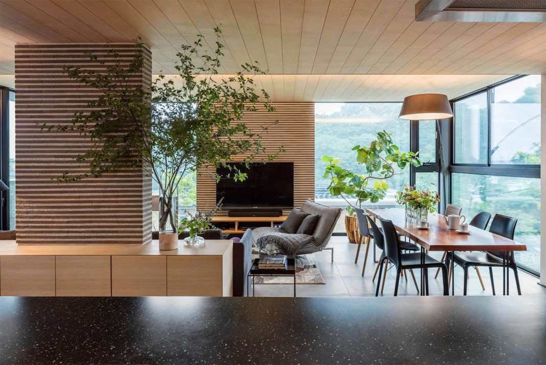 Inside an inspiring family home where plants haven't been forgotten by Mokkotsu