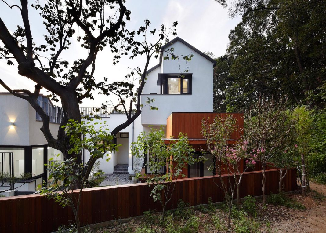 House embraced by the forest designed for a middle aged couple