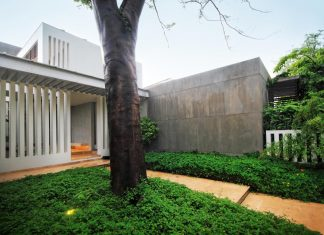 Design inspired by a desire to engage with the landscape and to celebrate the existing trees