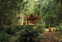 Off-the-grid cabin set in middle of an island's rainforest only accessible by foot
