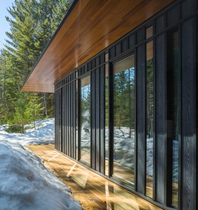 Private Guest House Sited At The Edge Of A Mature Forest
