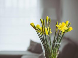 Interior Makeover - 6 Ways To Improve Your Home's Look This Spring