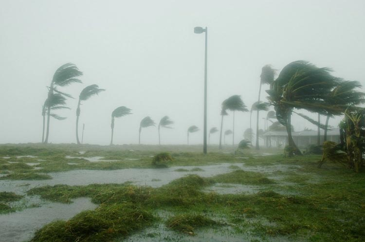 Simple Rules for Living Through a Hurricane