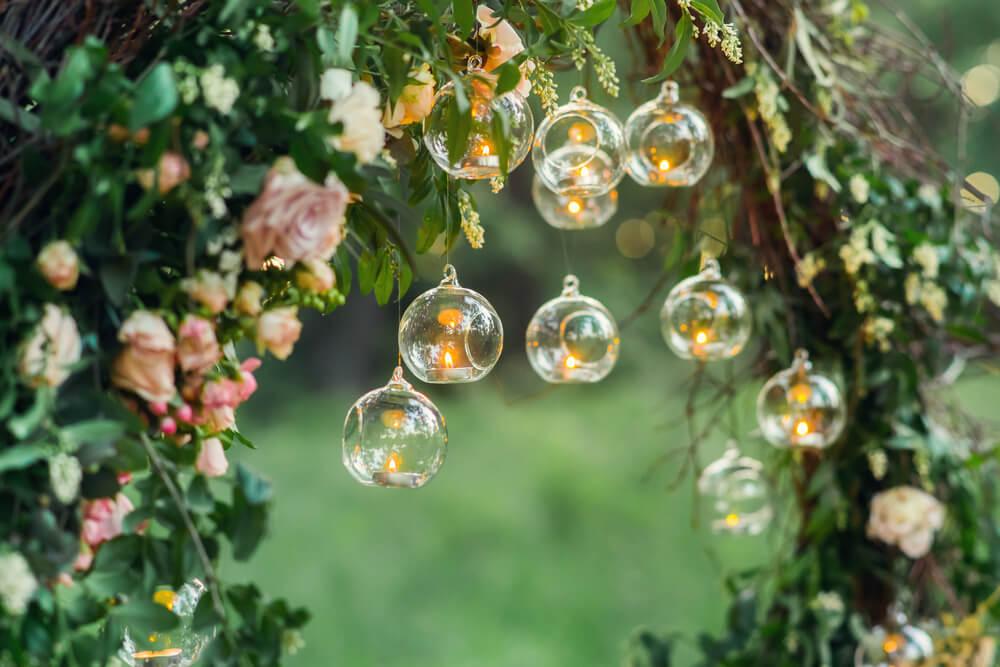backyard bulbs
