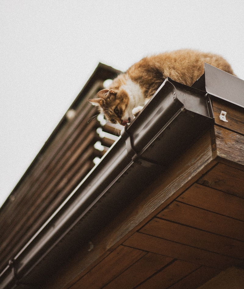 Gutter Installation: 7 Tips on How to Install Rain Gutters