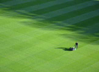 Effective Ways for a Greener, Healthier Lawn
