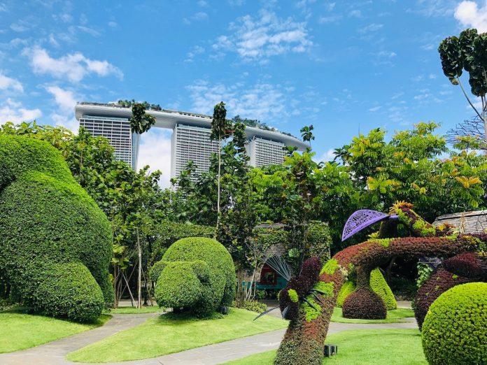 8 ways to create a stylish and modern garden
