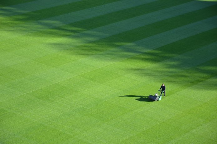 7 Steps To Keep Your Lawn Healthy And Fresh All Year Round
