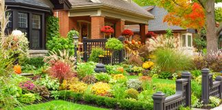 How To Improve Curb Appeal With Window Boxes & Planters