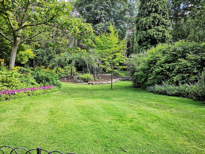7 Tips for Heat-Proofing Your Yard