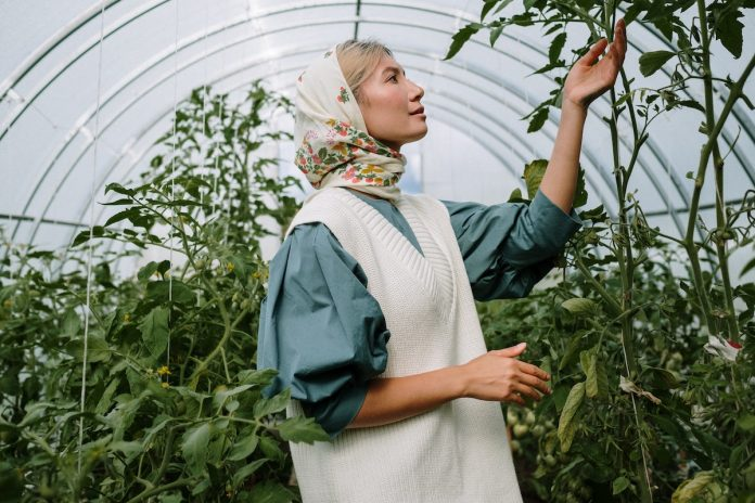 lady in Greenhouse