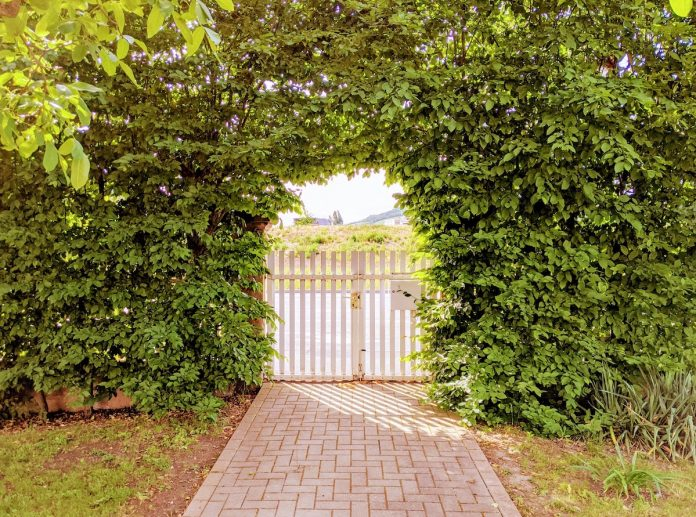 How to Create a Sense of Privacy in Your Yard